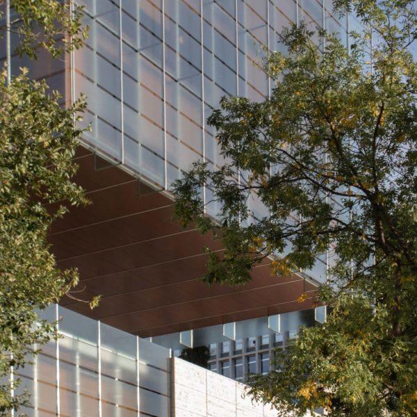 fotografia de arquitectura arboles delante edificio de vidrio