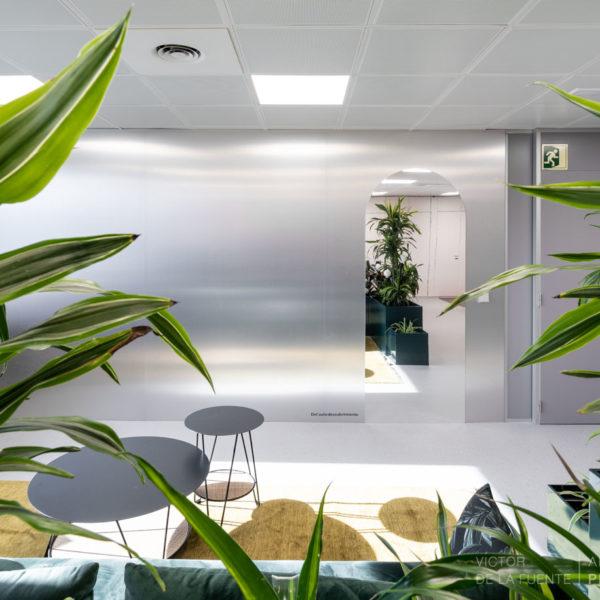 sala principal con plantas